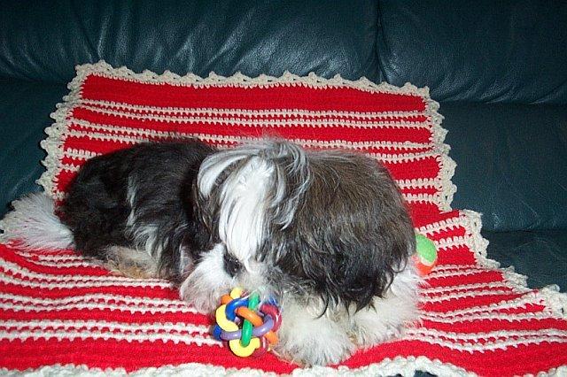 LawsonTurner-01-17-2007-withBlankie.jpg