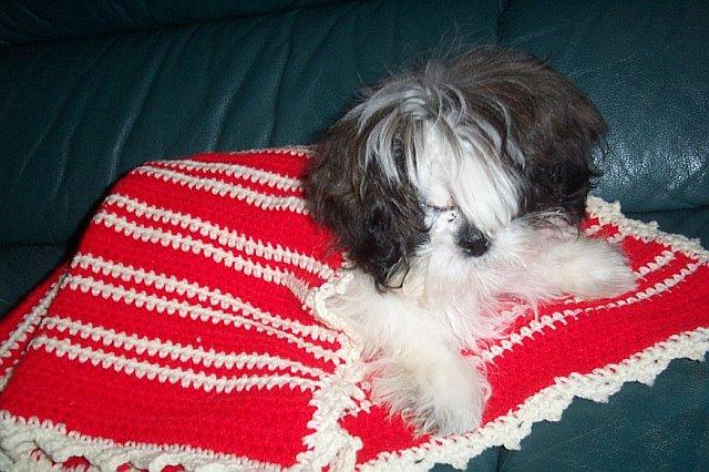 LawsonTurner-01-17-2007-withBlankie2.jpg
